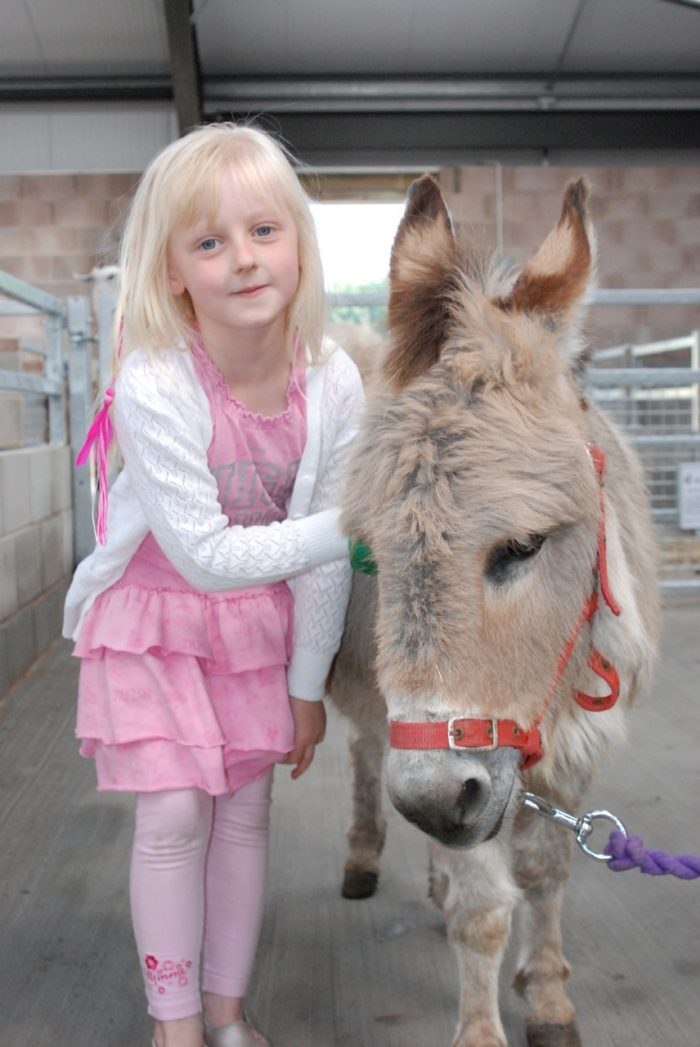 little-girl-and-donkey